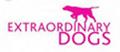 Extraordinary Dogs logo